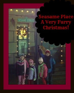 Sesame Place ~ A Very Furry Christmas!