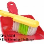 NEPA MOM 30 Day Spring Cleaning Challenge