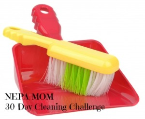 NEPA MOM 30 Day Cleaning Challenge