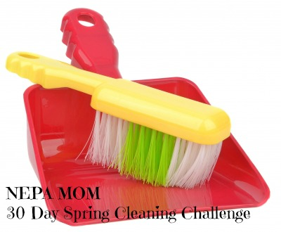 Day #1 of the NEPA MOM Spring Cleaning Challenge