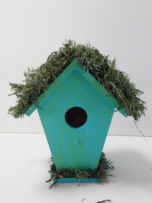 birdhouse partially done