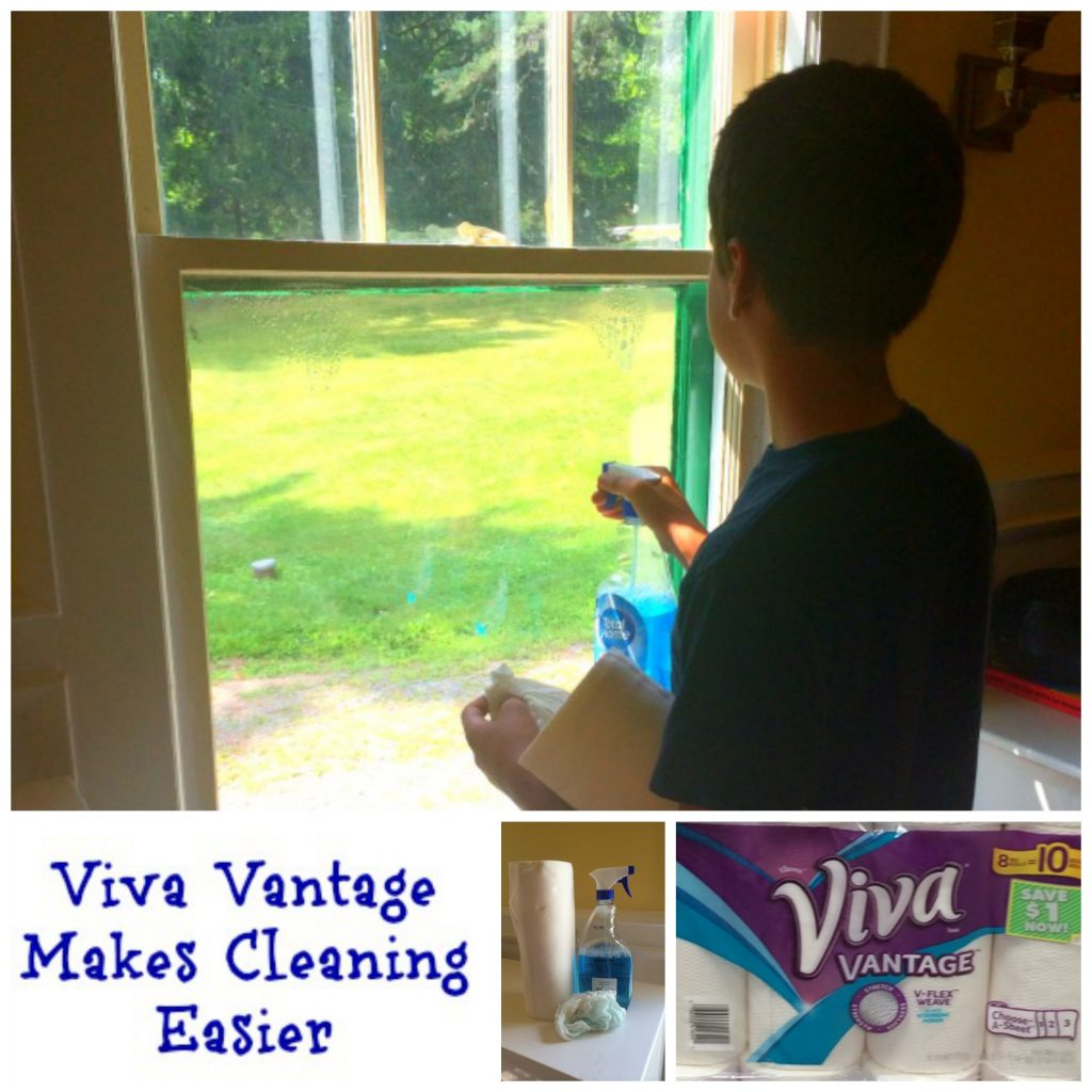 Fall Cleaning Made Easier with Viva Vantage