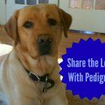 Share the love with Pedigree Dog Food #PedigreeGives #Cbias #shop