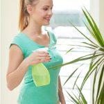 Indoor Gardening Tips for Beginners