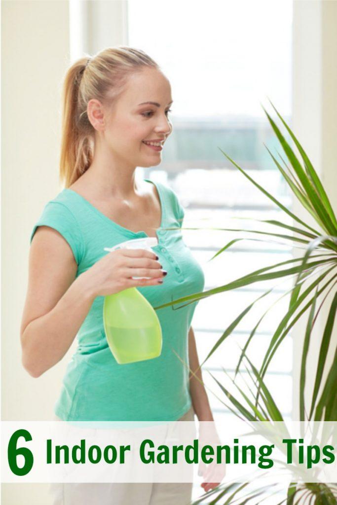 6 Indoor Gardening Tips