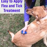 Easy to Apply Flea and Tick Treatment