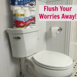 Flush your Summertime Entertainment Worries Away with Charmin!