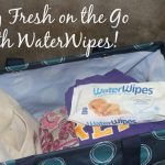 Stay Fresh on the Go with WaterWipes